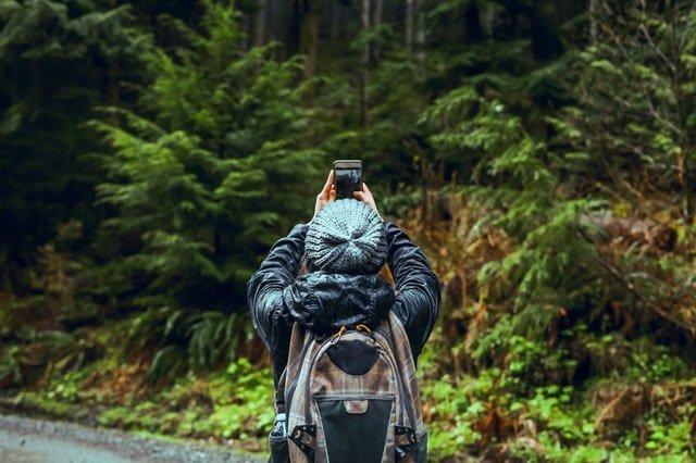 Camano Ridge Forest Preserve
