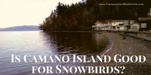 Is Camano Island Good for Snowbirds?