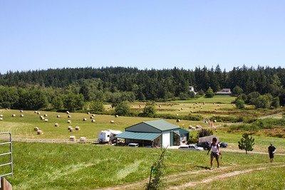 Farm on Whidbey Island