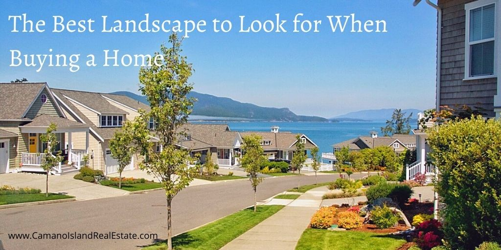 The Best Landscape to Look for When Buying a Home